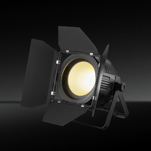 TH-253 200W Led Studio COB Par Light Fixtures